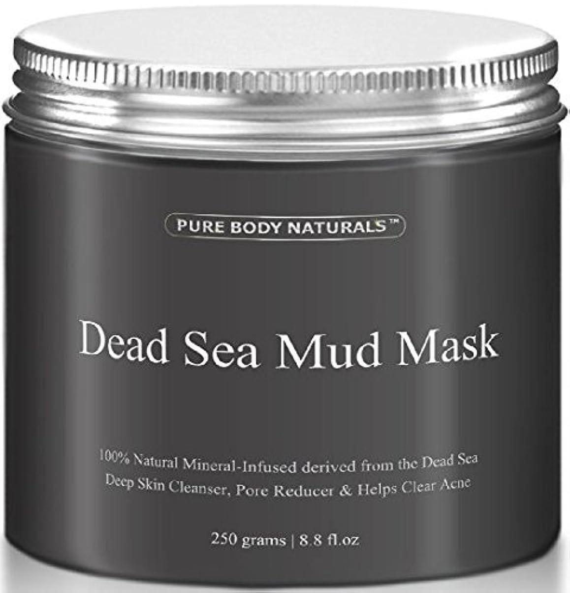 素子返済混合したDead Sea Mud Mask 死海の泥マスク 250g [並行輸入品]