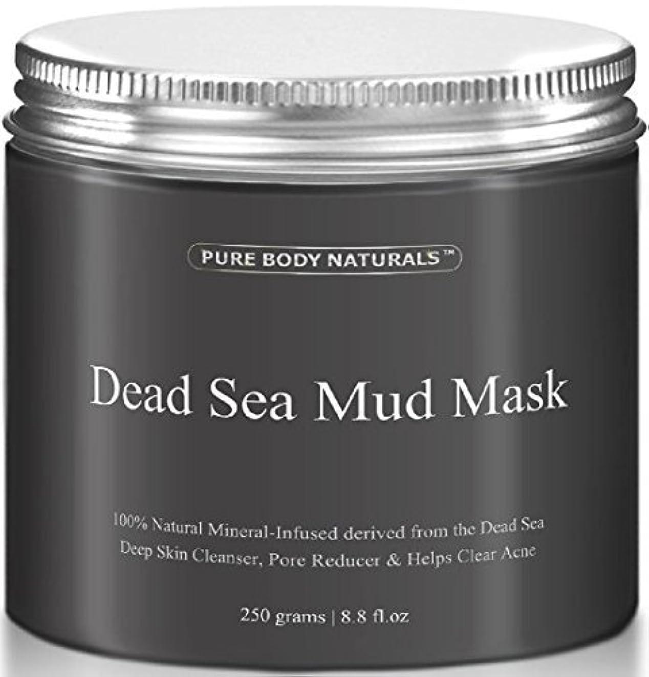 もっと少なくクアッガいらいらさせるDead Sea Mud Mask 死海の泥マスク 250g [並行輸入品]