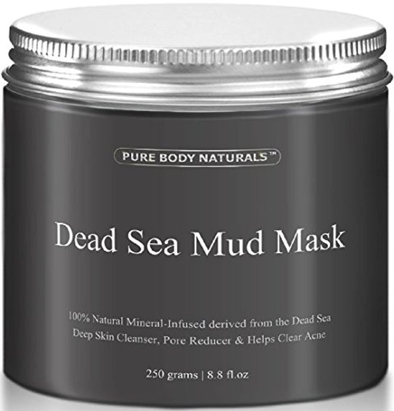 インレイ芝生提供されたDead Sea Mud Mask 死海の泥マスク 250g [並行輸入品]