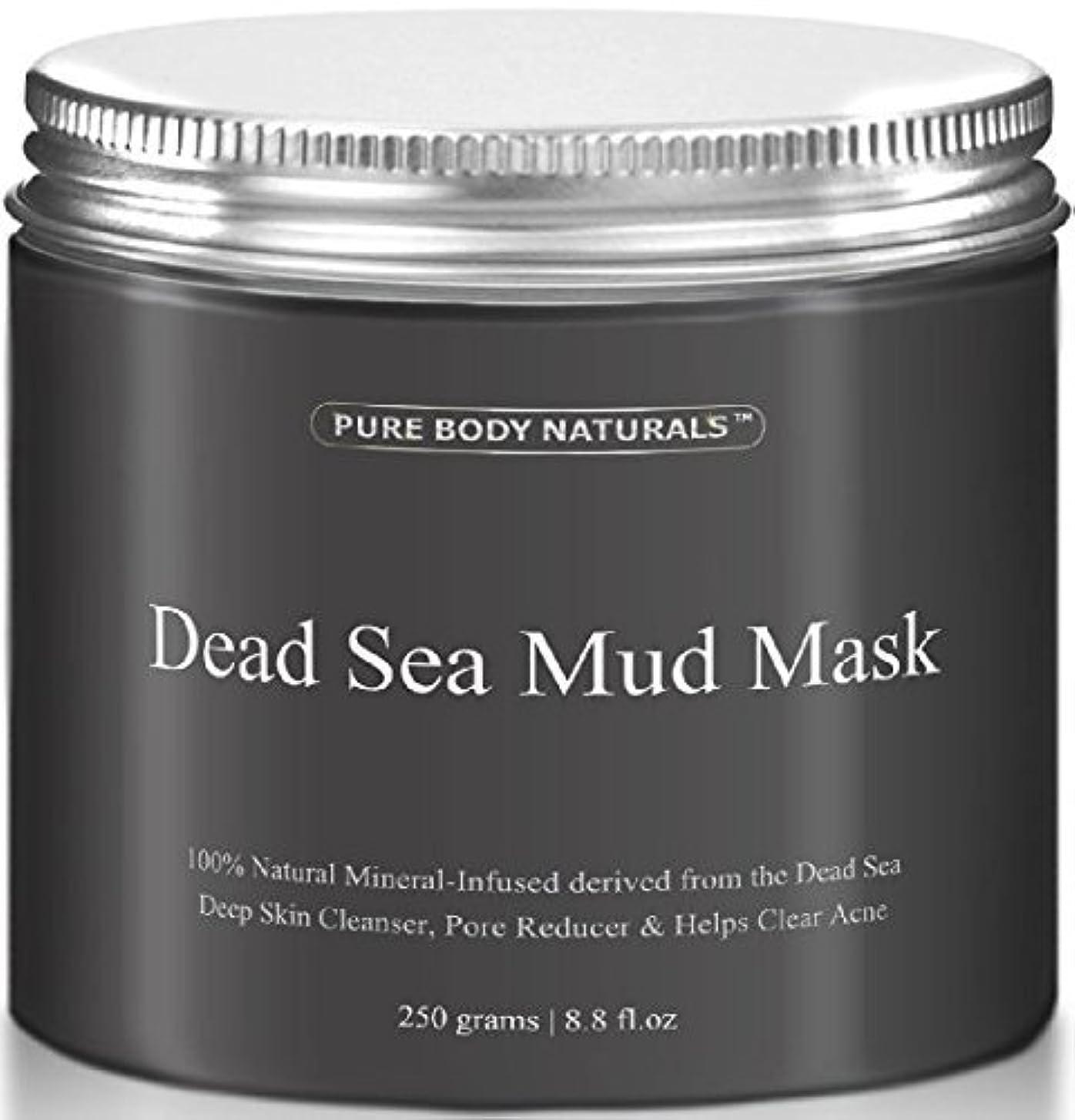 熟す状況崩壊Dead Sea Mud Mask 死海の泥マスク 250g [並行輸入品]