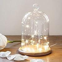 20の暖かい白マイクロLEDが付いているLights4funの大きく装飾的なガラス鐘