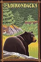 The Adirondacks–ブラックBear in Forest 16 x 24 Giclee Print LANT-48709-16x24