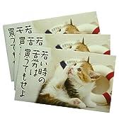 《猫ことわざ/若い時の苦労は買ってでもせよ》ぽち袋3枚セット☆面白お年玉袋/ポチ袋通販☆