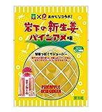 【期間限定】岩下の新生姜パインアメ味40g × 10パック
