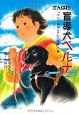 がんばれ!盲導犬ベルナ―「ベルナおねえさん大活躍」の巻 (ドキュメンタル童話・犬シリーズ)