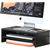 FITUEYES 2-Tier Monitor Stand Computer Laptop TV Screen Riser with Storage Shelf for Home Office DT204201WB