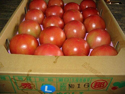 頑張ろう熊本!熊本県産 トマト Lサイズ 約4kg入り 20玉詰め