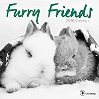Furry Friends 2018 Calendar