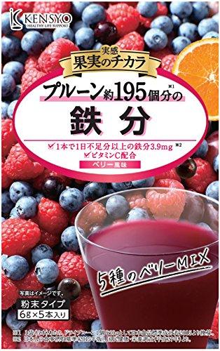 実感 果実のチカラ 鉄分 6g×5×5袋 健翔