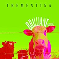 Brilliant Noise by Trementina (2013-11-20)