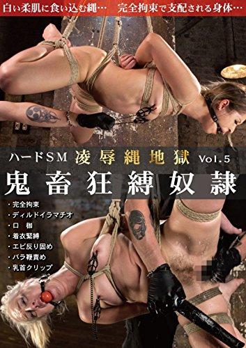 ハードSM凌辱縄地獄 鬼畜狂縛奴隷 VOL.05 PAINBLOOD/妄想族 [DVD]