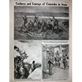 Ww1 1918 年の Nesle の馬の野戦砲兵のイタリア人の兵士