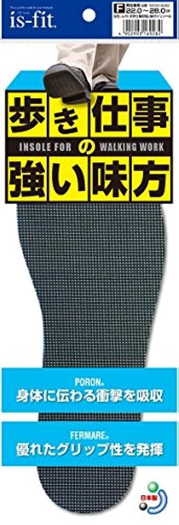 偏見染料支払いis-fit 歩き仕事の強い味方インソール 22.0~28.0cm
