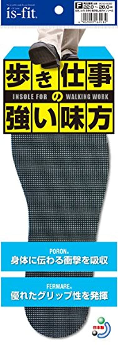 is-fit 歩き仕事の強い味方インソール 22.0~28.0cm
