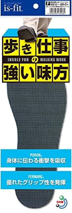型一致予約is-fit 歩き仕事の強い味方インソール 22.0~28.0cm