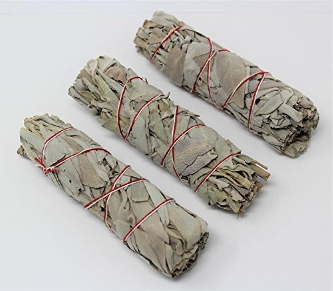 トーストからに変化するまたは3のセットホワイトセージスマッジWands / Sticks
