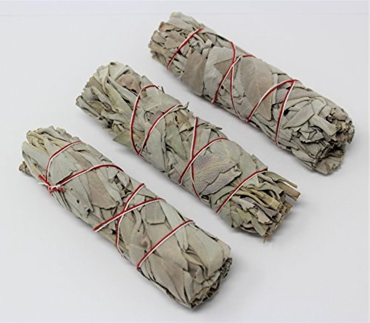 不正確派生する精度3のセットホワイトセージスマッジWands / Sticks