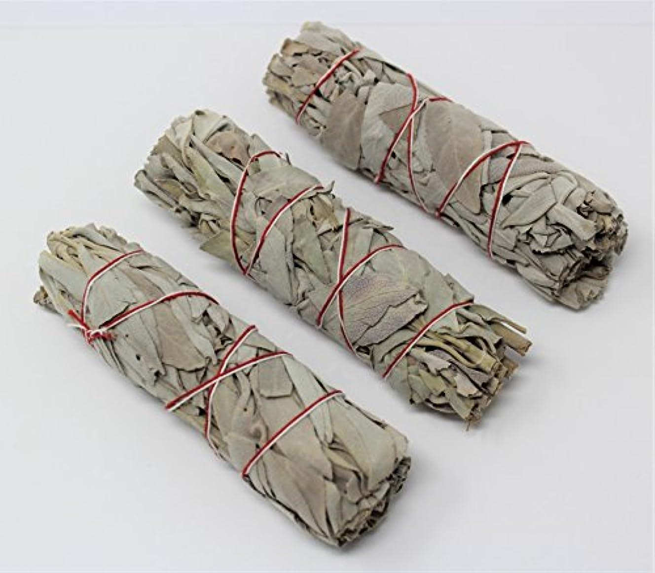 ファンネルウェブスパイダー枢機卿セーター3のセットホワイトセージスマッジWands / Sticks