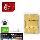 IIJ BIC SIMウェルカムパック SMS対応 ナノSIM