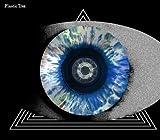 瞳孔(通常盤)