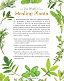 National Geographic Guide to Medicinal Herbs: The World's Most Effective Healing Plants 画像