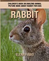 Children's Book: An Amazing Animal Picture Book About Rabbit for Kids