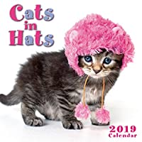 Cats in Hats 2019 Calendar