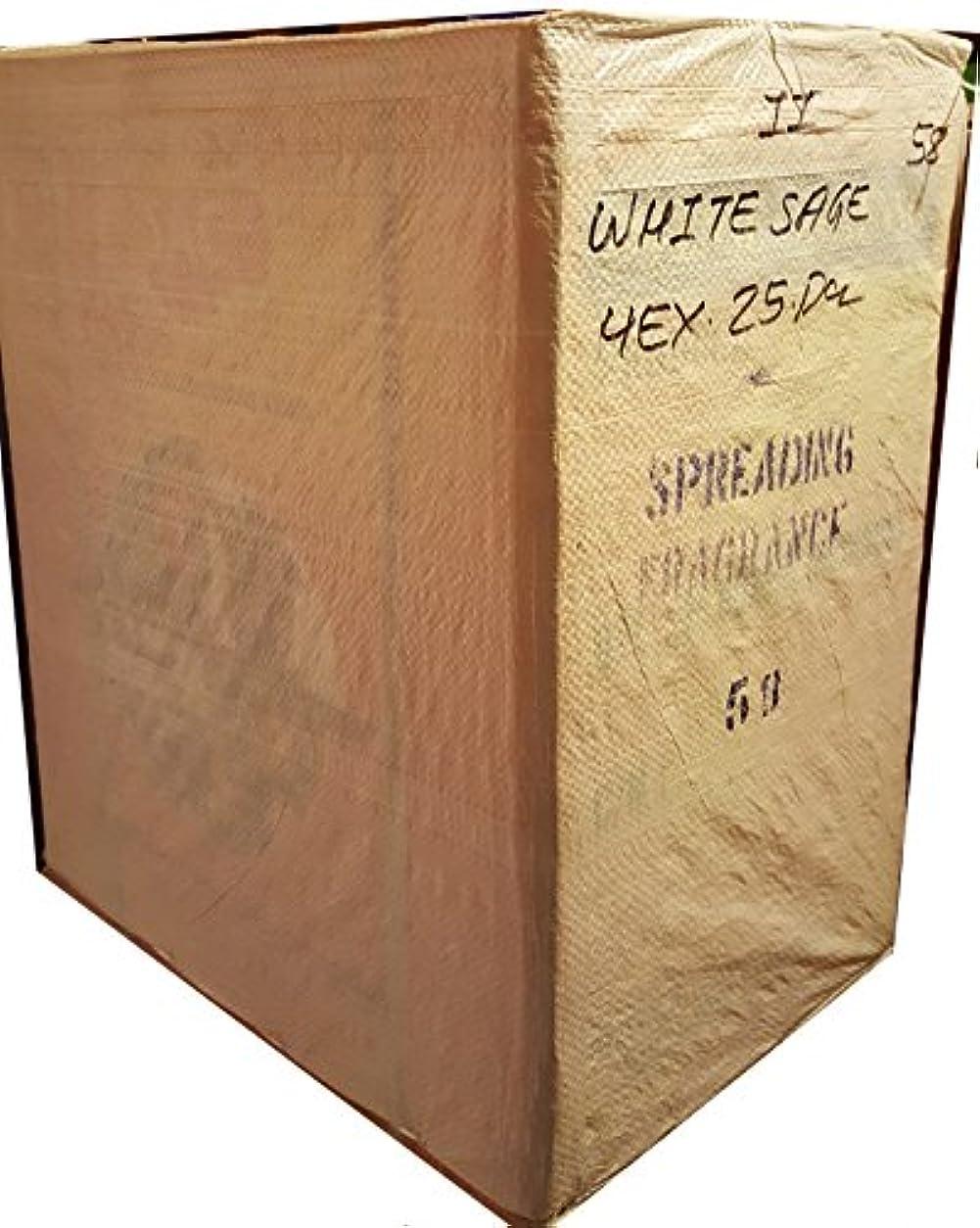 記念碑引退した固体JBJ Sacホワイトセージお香ケース50のボックス。