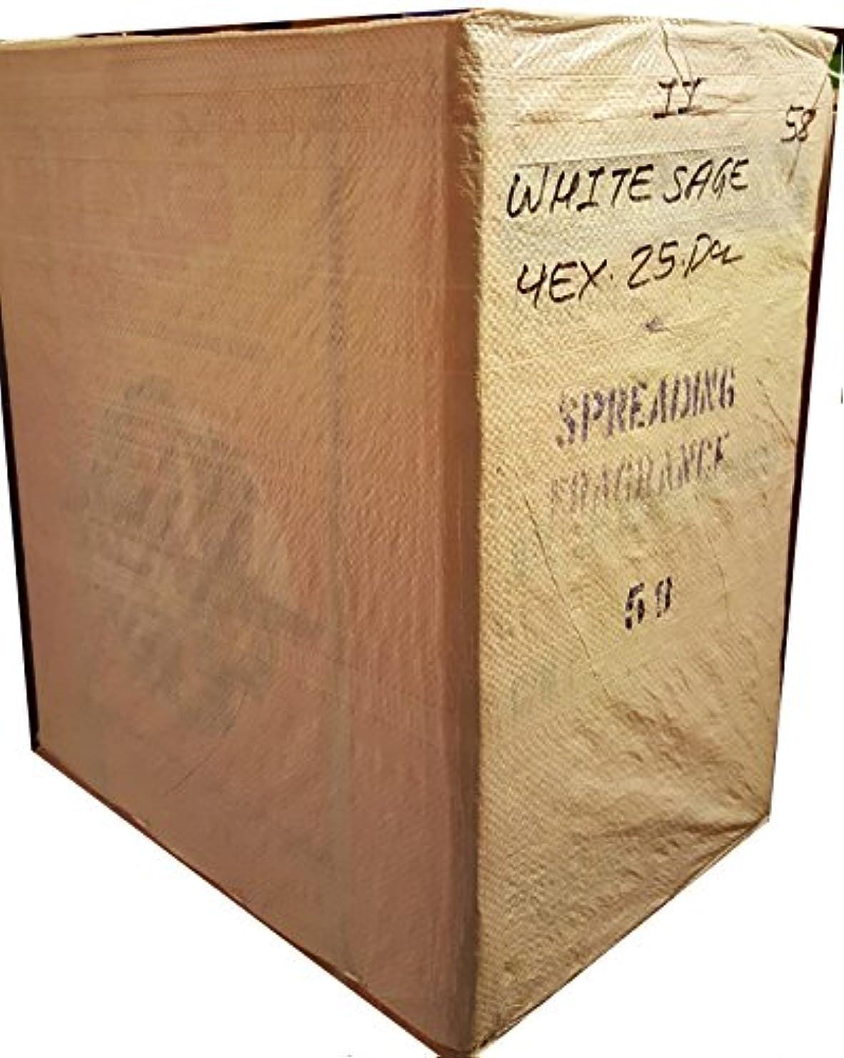 不承認反逆者必要ないJBJ Sacホワイトセージお香ケース50のボックス。