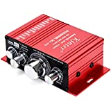 Car Audio Amplifier Power Cord DC 12V 3A, 20W + 20W Dual Channel Digital Mini HiFi Stereo Power Amplifier Handover AMP CD DVD MP3 PC (Without Power Supply)