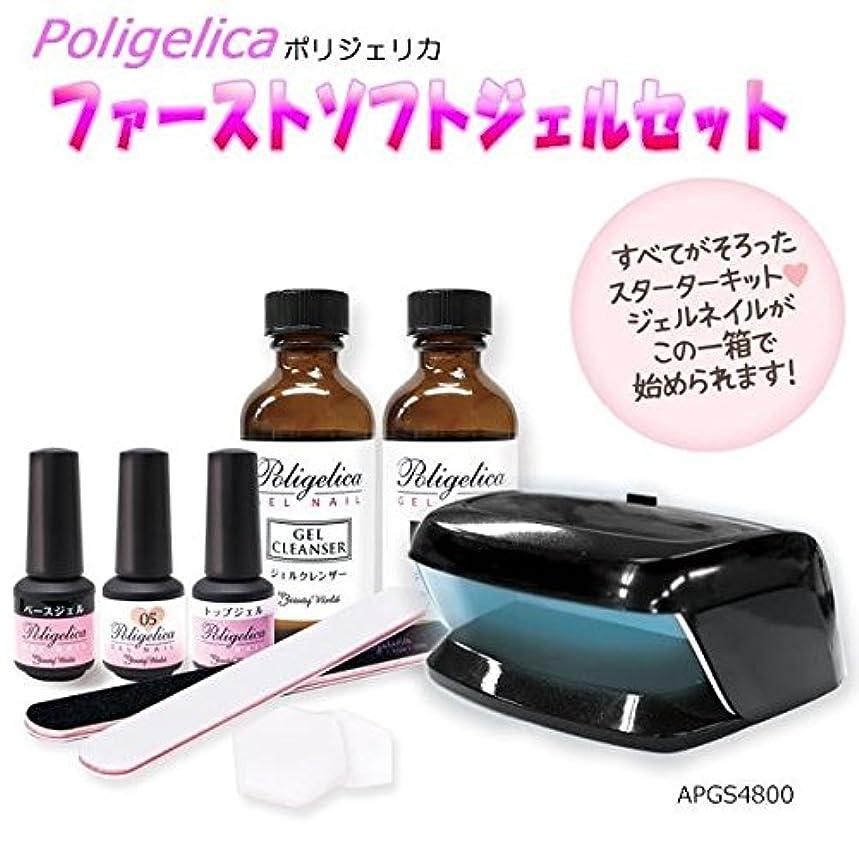 縞模様のリズミカルな不良品ビューティーワールド ポリジェリカ Poligelica LEDミニライト付 ファーストソフトジェルセット APGS4800