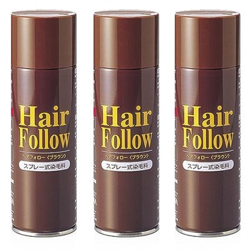 定期的な福祉締めるヘアフォロー ブラウン【3本セット】