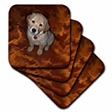 Dogs golden retriever–ゴールデンレトリバー子犬–コースター set-of-8-Soft ゴールド cst_3970_2