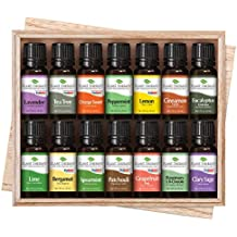 Plant Therapy Top 14 Singles Set   Lavender, Eucalyptus, Peppermint, More In A Wood Box   100% Pure, Undiluted   10 mL