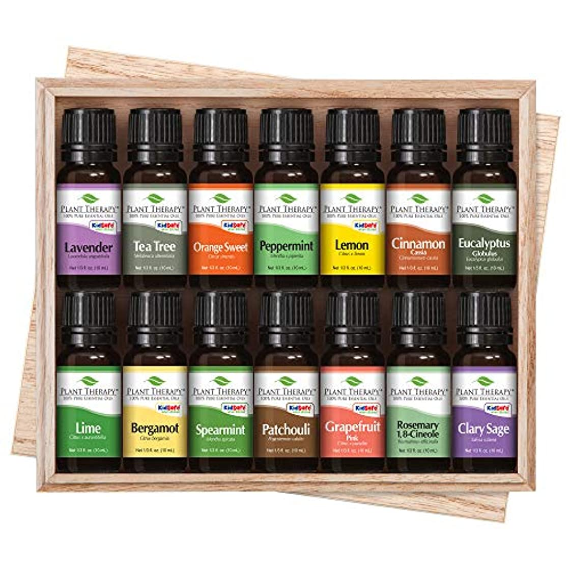ソケット拒絶する寝るTop 14 Essential Oil Set. Includes 100% Pure, Therapeutic Grade Oils of Bergamot, Clary Sage, Cinnamon, Eucalyptus...