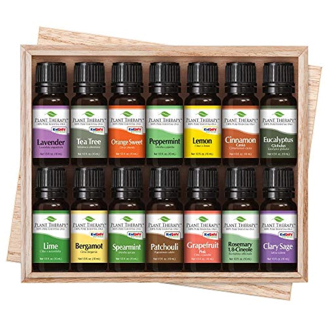 午後セクションセメントTop 14 Essential Oil Set. Includes 100% Pure, Therapeutic Grade Oils of Bergamot, Clary Sage, Cinnamon, Eucalyptus...