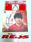浦和レッズ 2017 プレーヤーズミニ 色紙 直筆サイン入り 平川忠亮(日本代表 ACL クラブワールドカップ