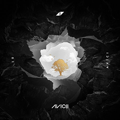 Without You [feat. Sandro Cavazza] [Explicit]