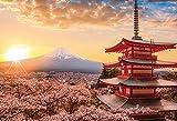 ジグソーパズル 春暁の富士山と桜 (山梨)1000ピース (26x38cm)