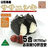 山形県産 ササニシキ 平成30年度産 (送料込)5合(約750g) (無洗米)