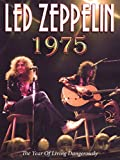 Amazon.co.jpLed Zeppelin: 1975 a Year of Living Dangerously [DVD] [Import]