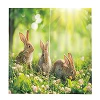 Perfk 3D 動物デザイン 遮光 カーテン カーテンフック カーテンリング付き 2パネル セット 家庭装飾カーテン 全14パターン - ウサギ