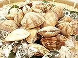 殻付き あさり 500g 冷凍 お吸い物や深川煮など様々な料理に 便利な殻つきアサリ 浅利