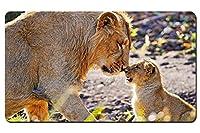 動物写真撮影、母ライオンとカブ パターンカスタムの マウスパッド 動物 デスクマット 大 (60cmx35cm)