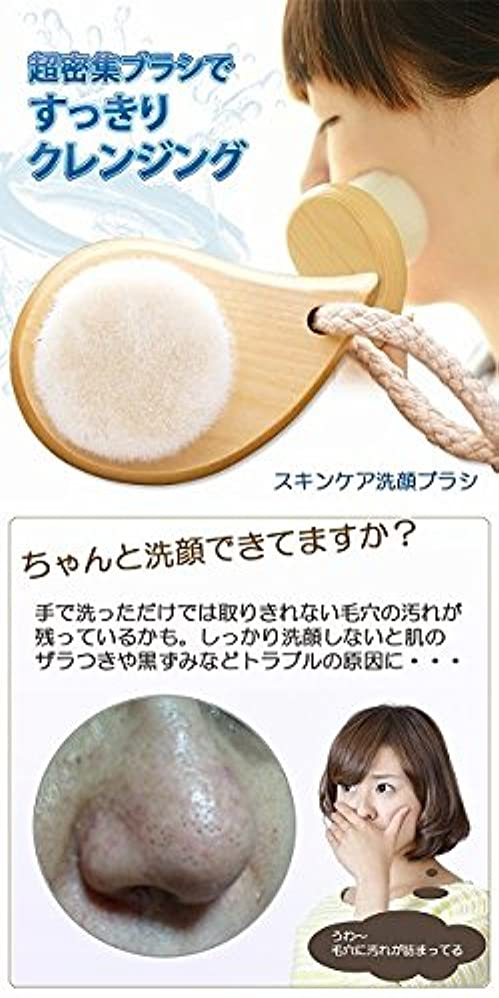 大いに通り成長スキンケア洗顔ブラシ