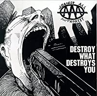 Destroy What Destroys You [12 inch Analog]