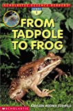 From Tadpole to Frog (Scholastic Science Readers)