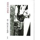 猫・陽のあたる場所―武田花写真集