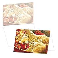 ECOeverywhere Applesボックス版カードセット、12カードと封筒、4x 6インチ、マルチカラー( bc90121)