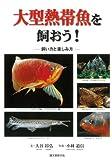 【ハ゛ーケ゛ンフ゛ック】大型熱帯魚を飼おう!